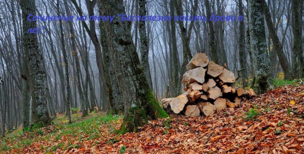 Бесполезно носить дрова в лес сочинение