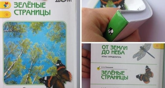 Зелёные страницы