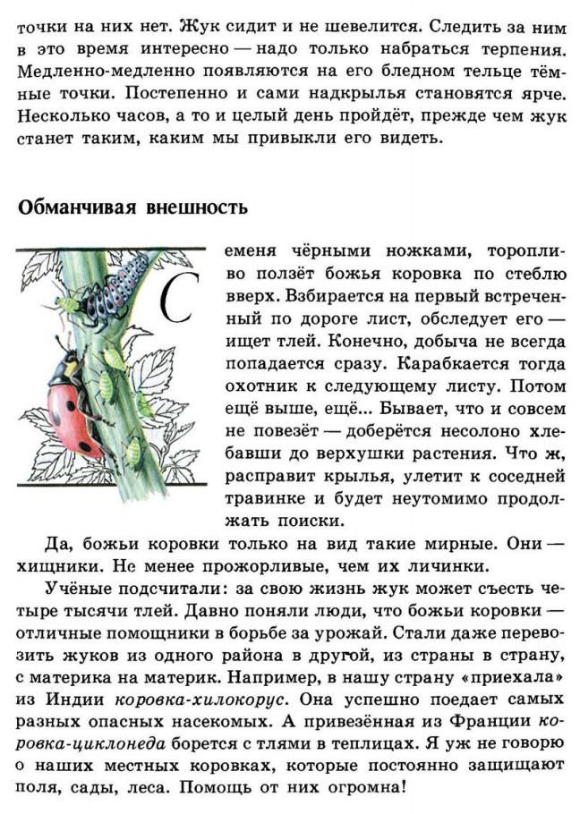 Зелёные страницы Божья коровка