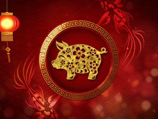 Год свиньи по китайскому гороскопу