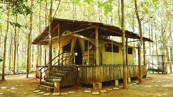 Кемпинговые туры в Шри-Ланке
