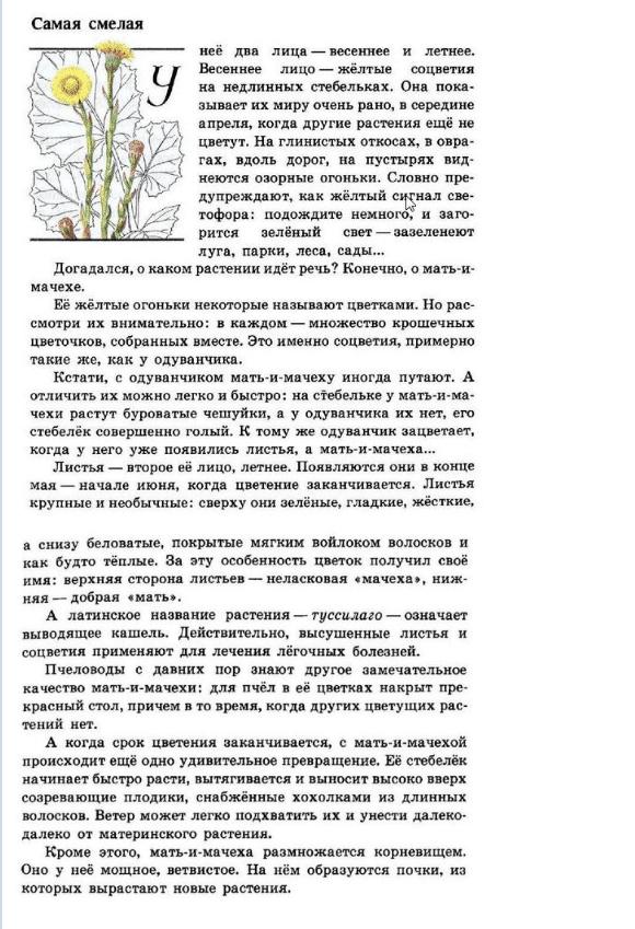 """Рассказ """"Мать-и-мачеха"""""""